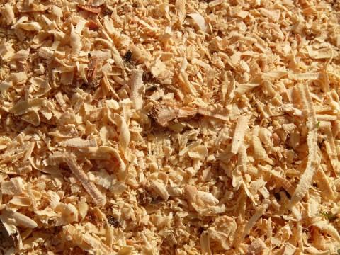 sawdust-5892_1280