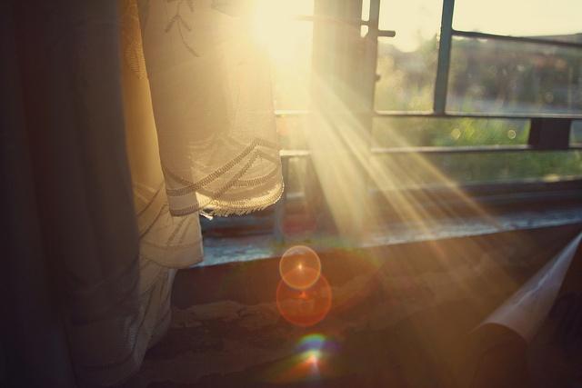 Window-rays